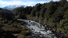 Mahuia River in Tongariro National Park New Zealand Stock Footage