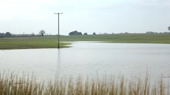 Flooded agricultural field, crop disaster Stock Footage