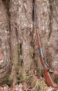 rifle - stock photo