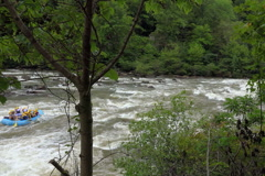 White water rafting rapids in Ocoee river - stock footage