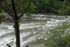 White water rafters  taking rapids - stock footage