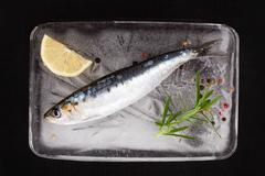 anchovy fish on ice. - stock photo