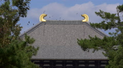 Roof of Todaiji Temple in Nara, Japan Stock Footage