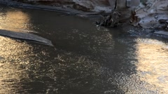 Pan across river flowing under a bridge. Stock Footage