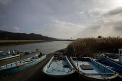 boats in wetland - stock photo