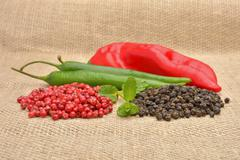 Red hot chili pepper on the jute gunny bag Stock Photos
