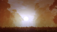 4K Mysterious Magic Forest Sunset Sunrise 3D Animation 2 Stock Footage