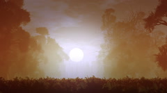 Mysterious Magic Forest Sunset Sunrise 3D Animation 2 Stock Footage