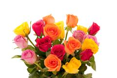 Bouquet of multi-colored roses - stock photo