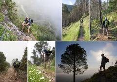 Hiking collage Stock Photos