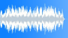 Long Days, Lonely Nights (WP) 03 Alt2 (bluesy,dobro,slow,emotive,soulful,south) - stock music