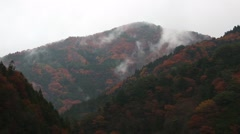 Japanese Autumn - Sea of clouds - stock footage
