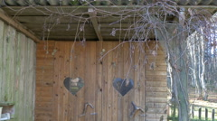 A wooden yard toilet with some vines on it Stock Footage