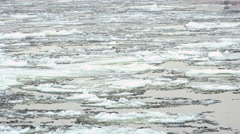 Ice drift down the river on a freezing stage Stock Footage