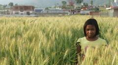 Kathmandu Nepal girl standing in wheat field in Eastern Kathmandu, Nepal Stock Footage