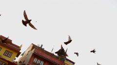 Kathmandu Nepal Pigeons flying at Boudhanath Stupa at the famous religious Stock Footage
