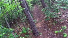 Mountain biking in the back wood trails of Copperhill, Tennessee USA Stock Footage