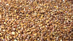 Red quinoa (not loopable) Stock Footage