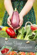 Composite image of new year goodness Stock Photos