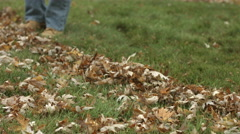 Detail of autumn leaves being raked 4K Stock Footage