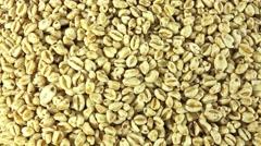 Honey wheats (not loopable) Stock Footage
