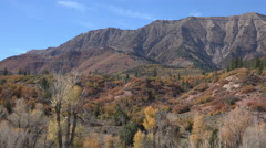 Autumn trees forest mountain Nebo peaks Utah 4K 019 Stock Footage