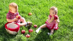 Two cute babies in red eat red apples near basket on green grass Stock Footage