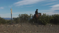 Argentina Gauchos - Herding sheep on horseback with dogs Stock Footage