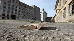 Sheets of an old book turned over by the wind Stock Footage