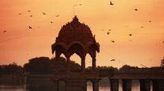 Group of birds pigeons  flying together at sun set at gadishar lake rajsthan  Stock Footage
