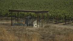 wine producing - stock footage