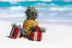 Tropical holiday card, party for vegans Stock Photos