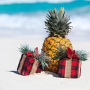 tropical holiday card, party for vegans - stock photo