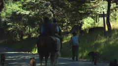 Argentina Gauchos - on road near Rio Manso Stock Footage