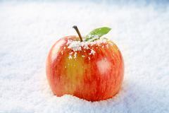 Fresh red apple in snow - closeup Stock Photos