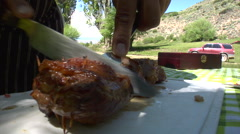 Argentina Picnic 03 Stock Footage