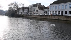View into hazy sunshine down a canal with 2 swans in Bruges, Belgium. With sound - stock footage