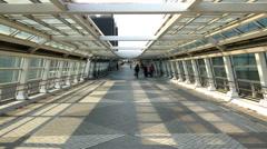 Time Lapse of People on Pedestrian Walkway  - Tokyo Japan Stock Footage