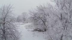 frozen trees. Winter flights.  Winter Aerial  in 2.7K (2704x1524) Stock Footage