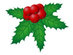 christmas holly vector illustration - stock illustration