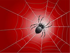 Spider on wed Stock Illustration