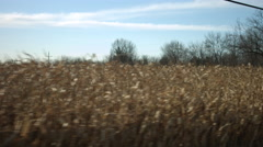Driving plate: sunlit farmland on driver side A 4K - stock footage