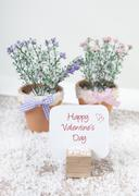 Happy valentines day with flowers Stock Photos