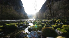 Mountain River in Gorge Stock Footage