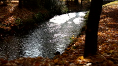 Small bubbly river Stock Footage