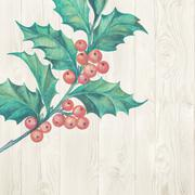 Christmas mistletoe. - stock illustration