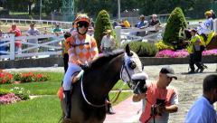 Woman jockey mounts race horse in paddock Stock Footage