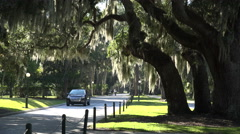 Car drives past, road on jekyll island with live oak trees, ga, usa - stock footage