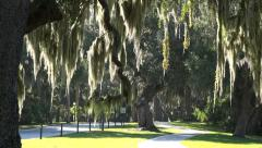 cycle trail, jekyll island, ga, usa - stock footage