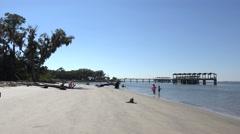 People on driftwood beach, jekyll island, ga, usa Stock Footage